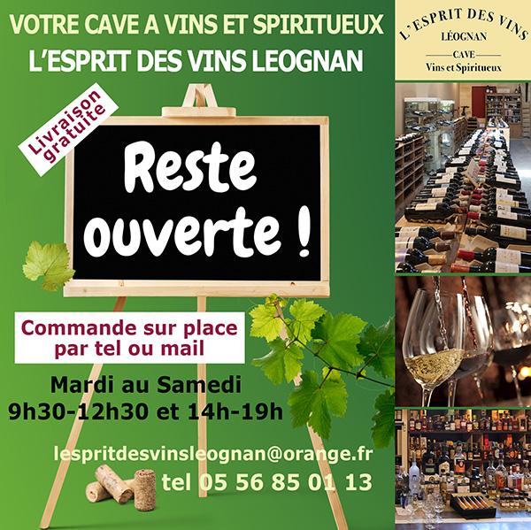 Nouvelles et actualités de l'esprit des vins Léognan octobre 2020