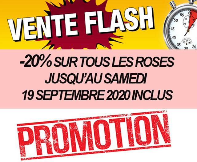 Nouvelles et actualités de l'esprit des vins Léognan vente flash septembre 2020